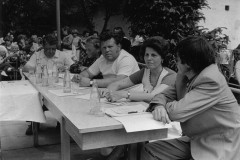 1981 Košter